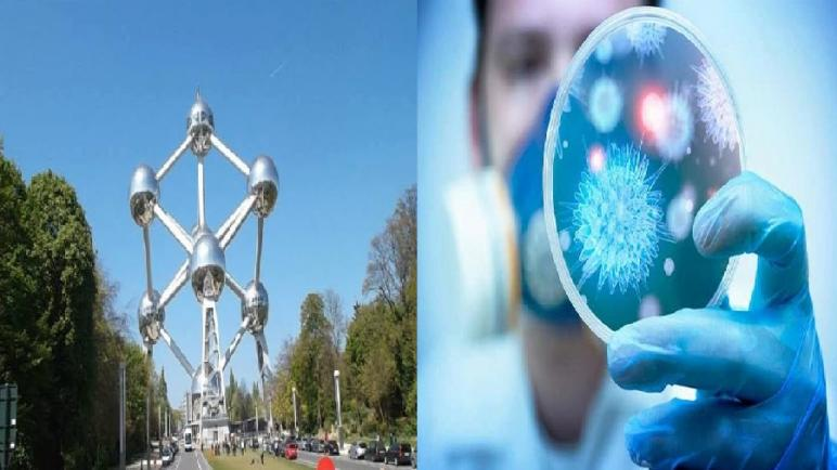 بلجيكا… عدد حالات العدوى الجديدة بفيروس كورونا انتقلت إلى ما دون 100 حالة